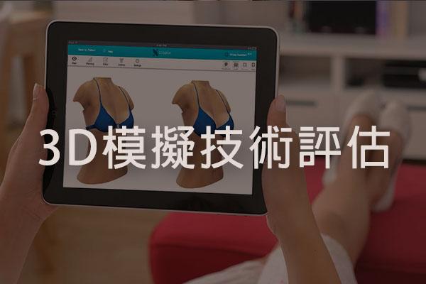 3D模擬技術
